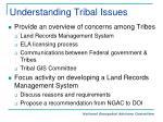 understanding tribal issues