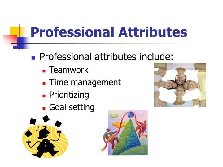 Professional Attributes