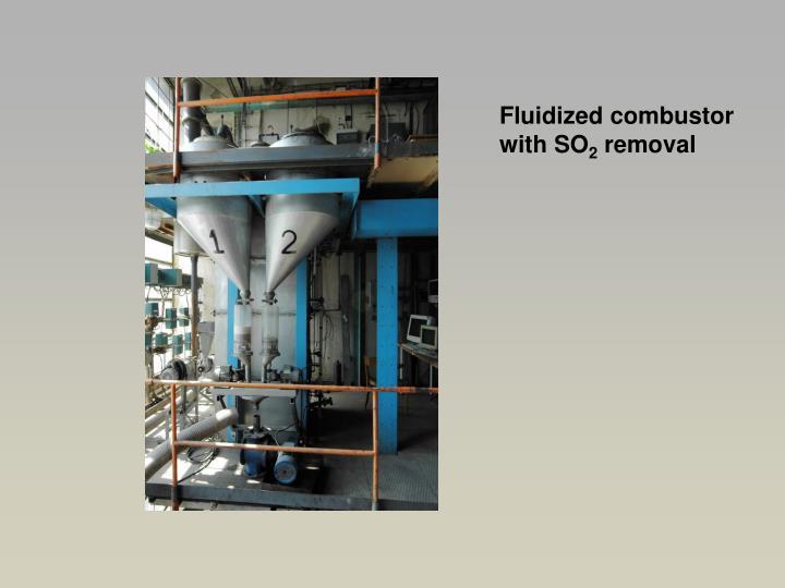 Fluidized combustor
