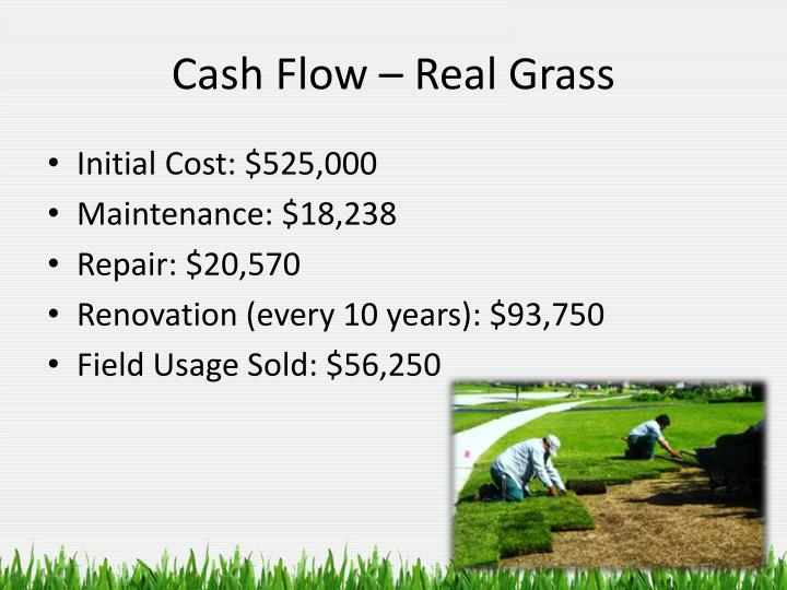 Cash Flow – Real Grass