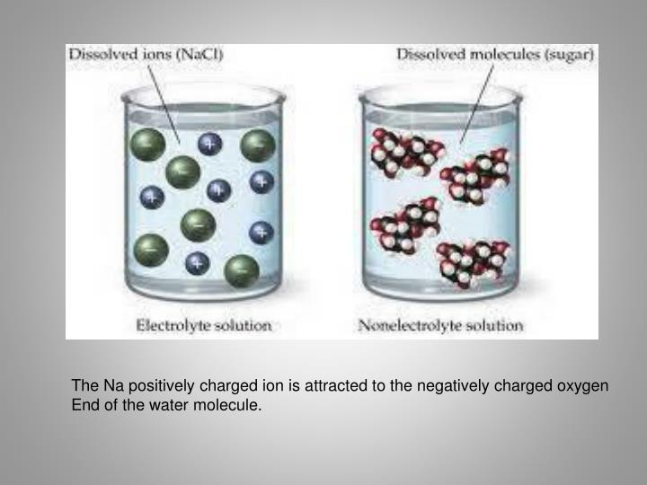 The Na positively charged ion is attracted to the negatively charged oxygen