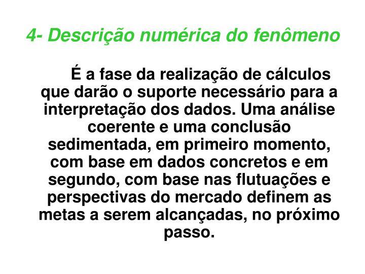 4- Descrição numérica do fenômeno