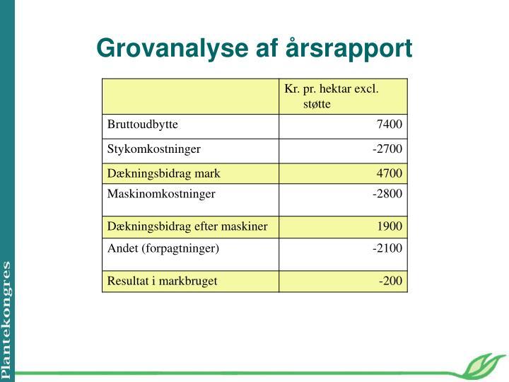Grovanalyse af årsrapport
