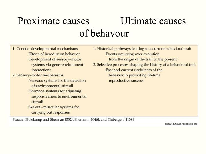 Proximate causes		Ultimate causes