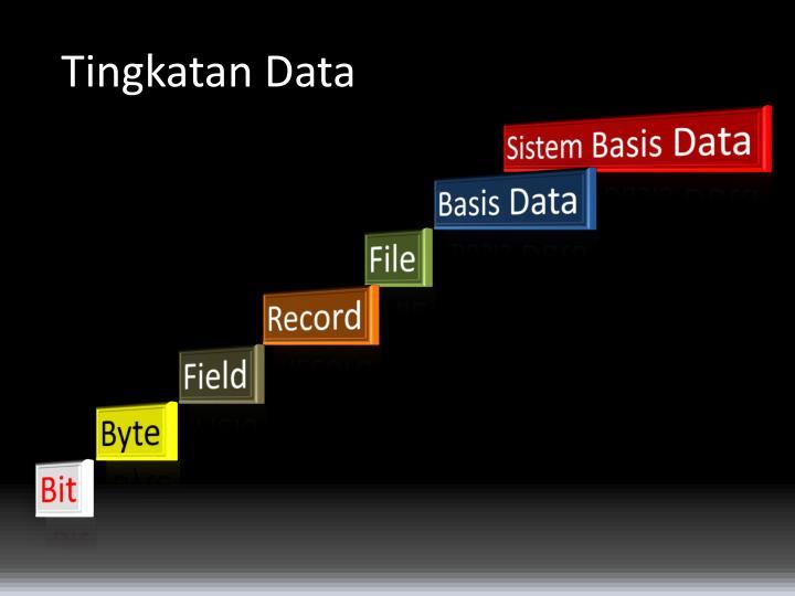 Tingkatan Data