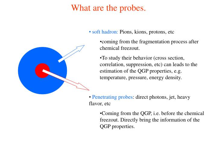 What are the probes.