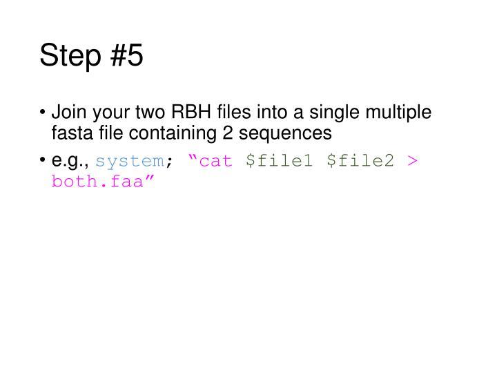 Step #5