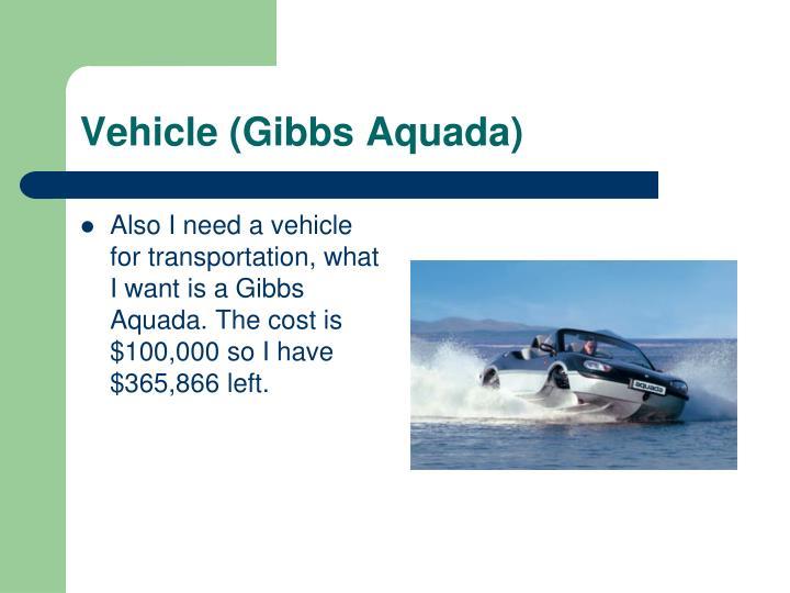 Vehicle (Gibbs Aquada)