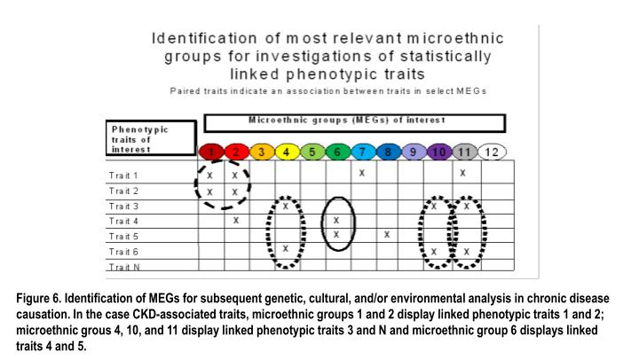 Figure 6. Identification of MEGs for subsequent genetic, cultural, and/or environmental analysis in chronic disease causation. In the case CKD-associated traits,