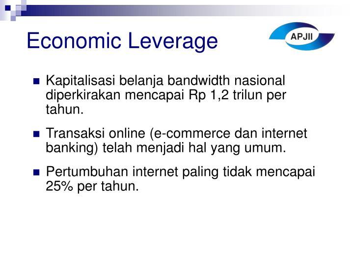 Economic Leverage