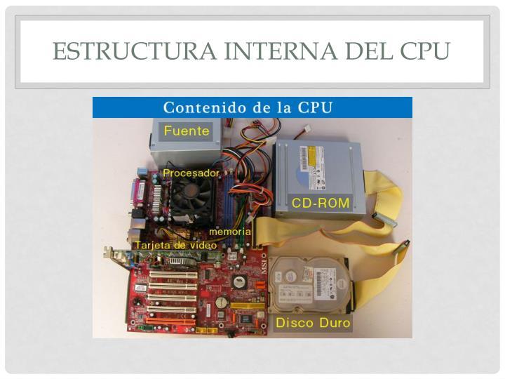 Estructura interna del CPU
