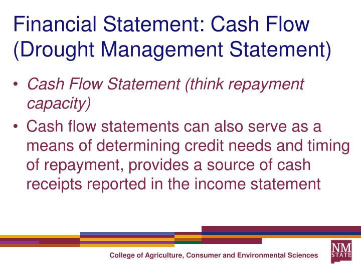 Financial Statement: Cash Flow