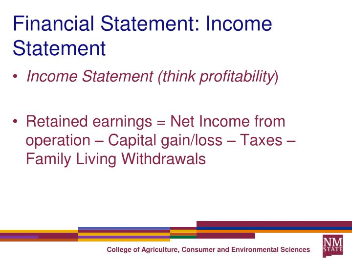 Financial Statement: Income Statement