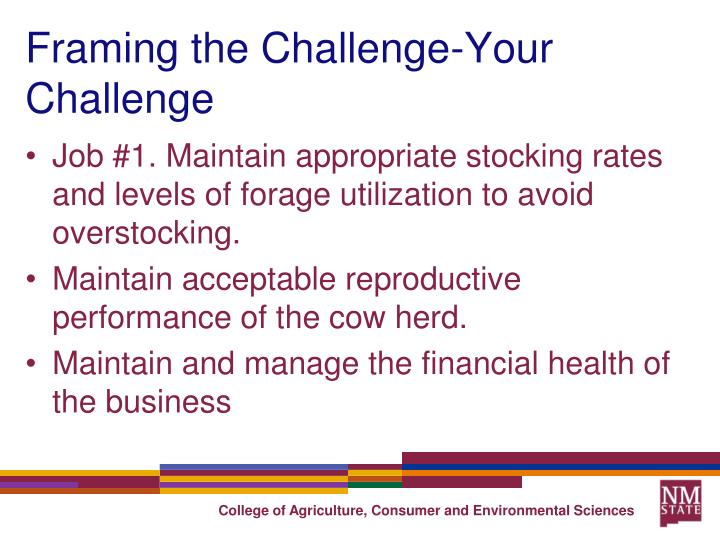 Framing the Challenge-Your Challenge