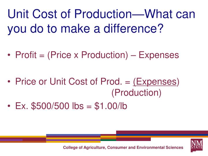 Unit Cost of Production—What can you do to make a difference?