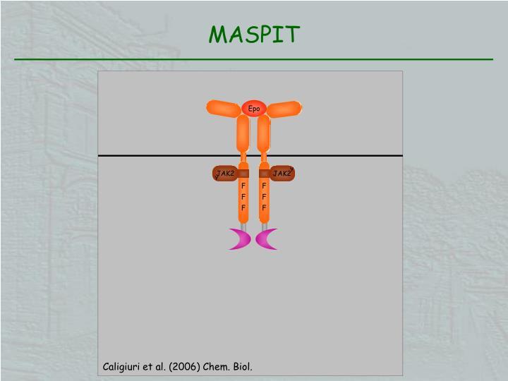 MASPIT