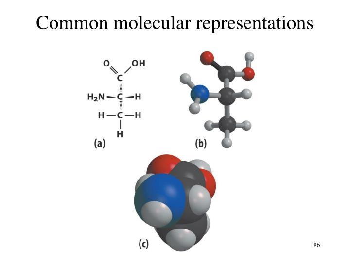 Common molecular representations