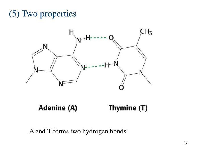 (5) Two properties