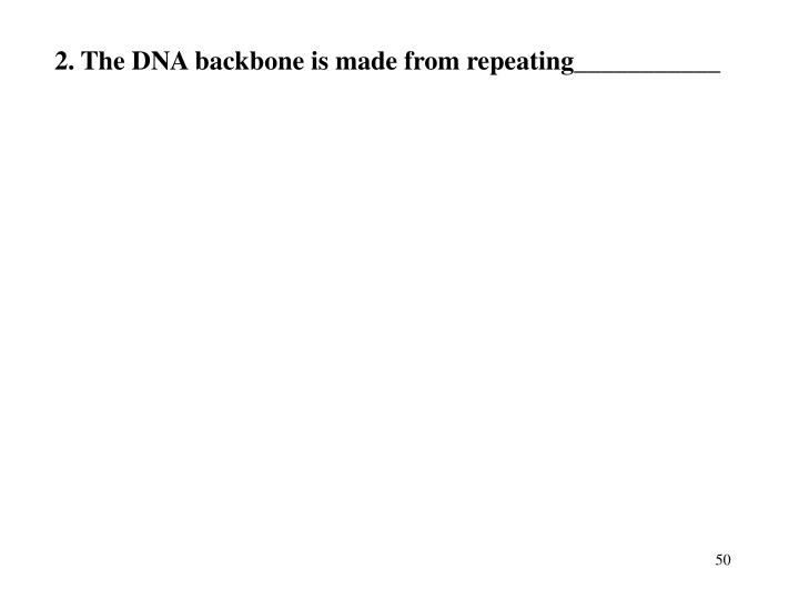 2. The DNA backbone is made from repeating___________