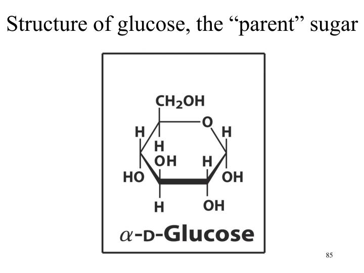 "Structure of glucose, the ""parent"" sugar"