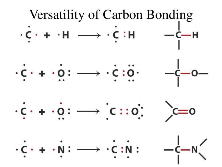 Versatility of Carbon Bonding