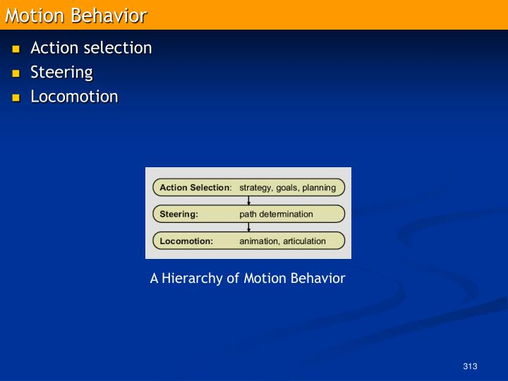 Motion Behavior