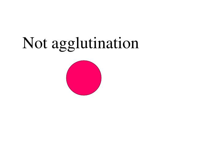 Not agglutination