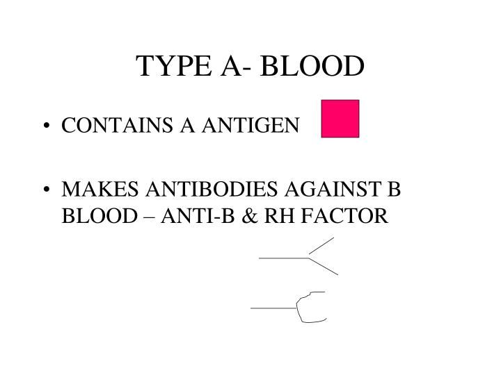 TYPE A- BLOOD