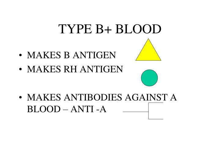 TYPE B+ BLOOD