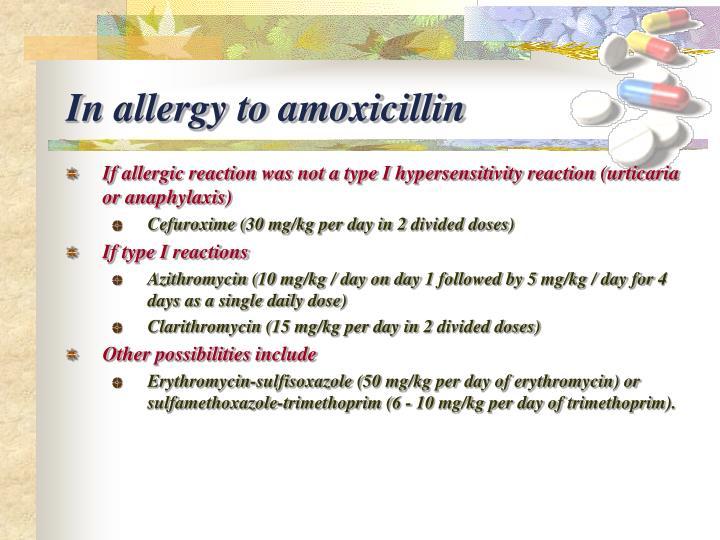 In allergy to amoxicillin