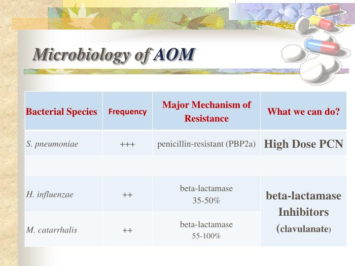 Microbiology of