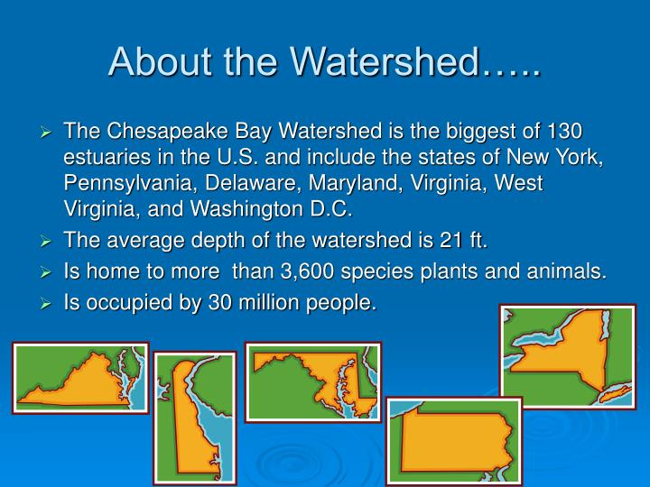 About the Watershed…..