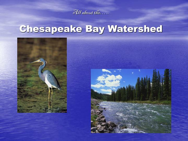 all about the chesapeake bay watershed