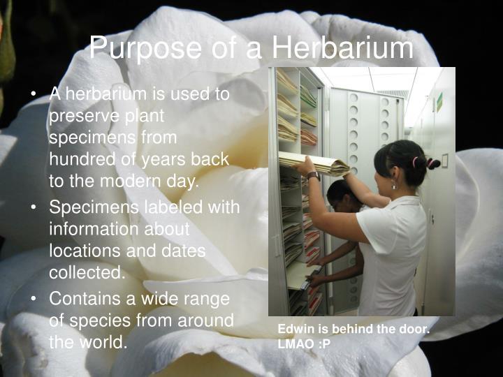 Purpose of a Herbarium