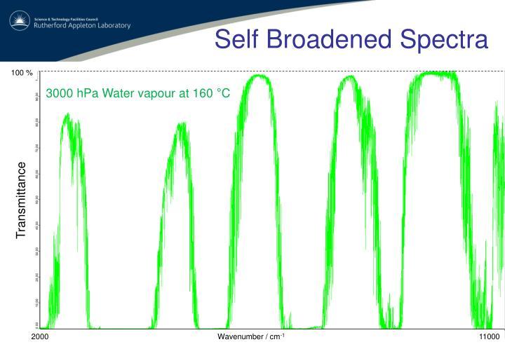 Self Broadened Spectra