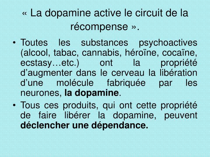 «La dopamine active le circuit de la récompense».