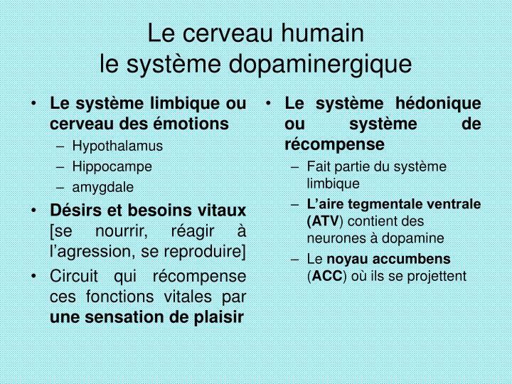 Le système hédonique ou système de récompense