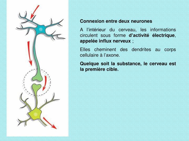 Connexion entre deux neurones