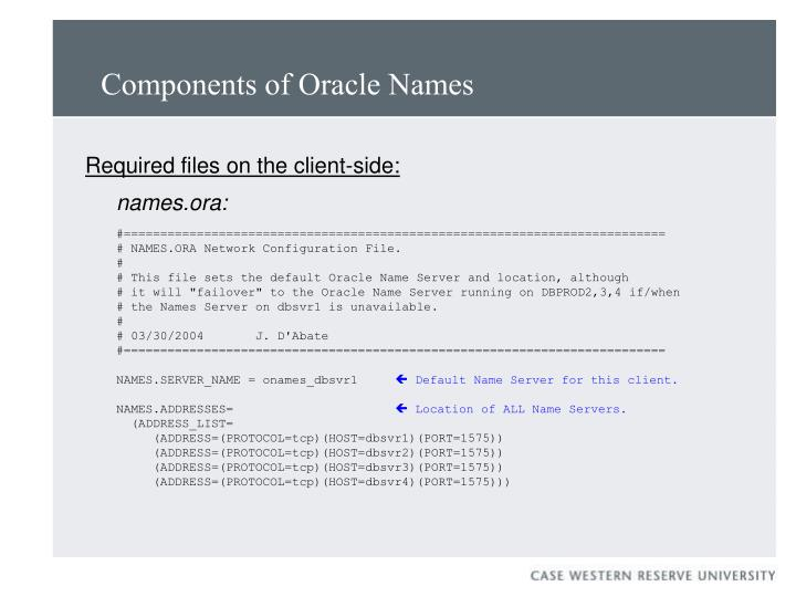 Components of Oracle Names