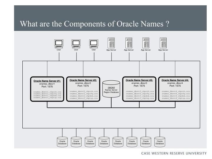 What are the Components of Oracle Names ?