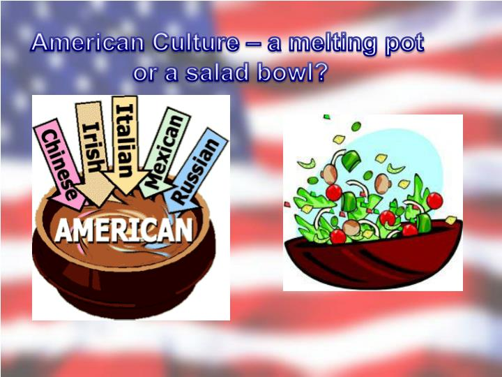 melting pot ethnic stew tossed salad metaphors that describe american culture