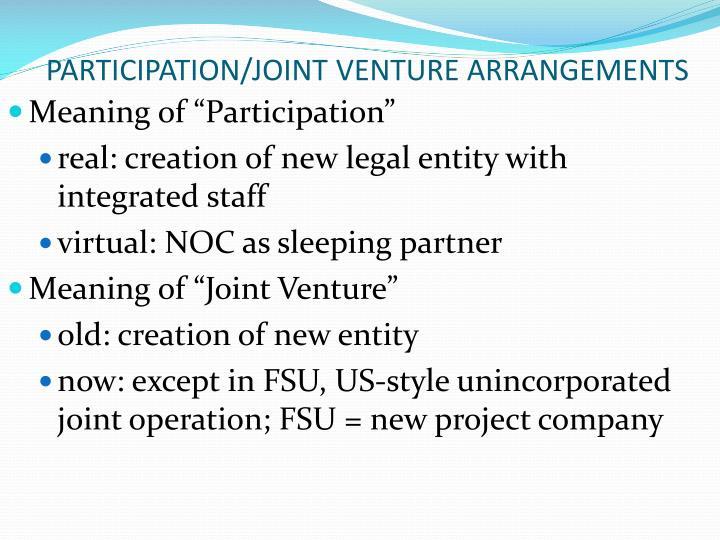 PARTICIPATION/JOINT VENTURE ARRANGEMENTS