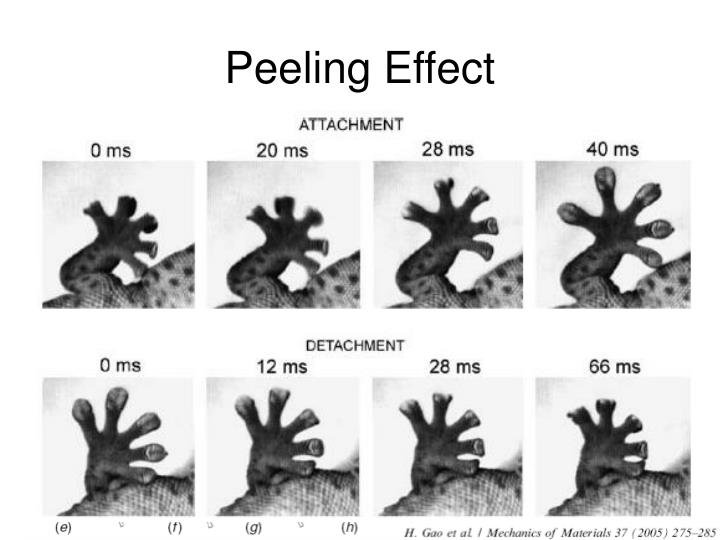 Peeling Effect