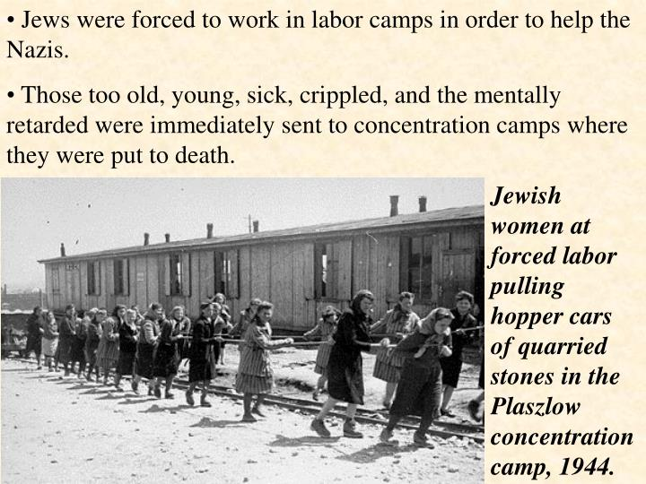 Jews were forced to work in labor camps in order to help the Nazis.