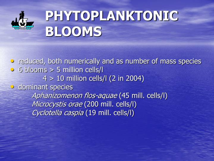 PHYTOPLANKTONIC BLOOMS