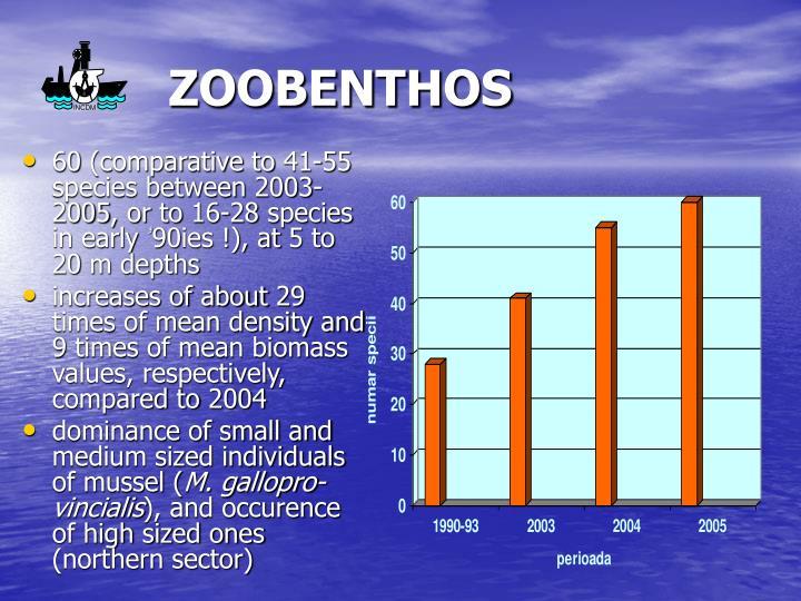 ZOOBENTHOS