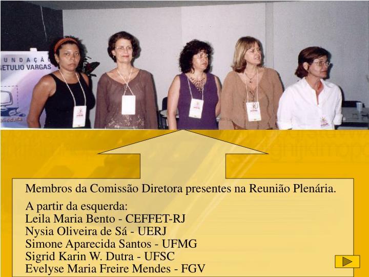 Membros da Comissão Diretora presentes na Reunião Plenária.