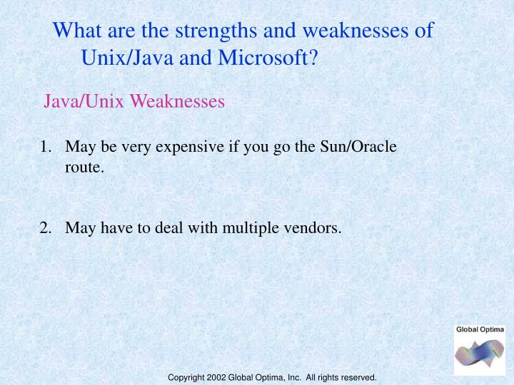 What are the strengths and weaknesses of
