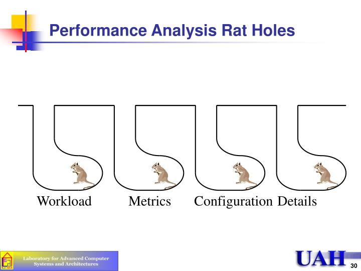 Performance Analysis Rat Holes