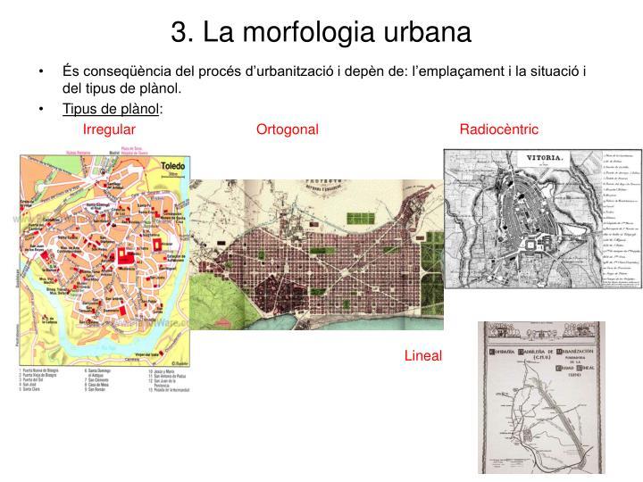 3. La morfologia urbana